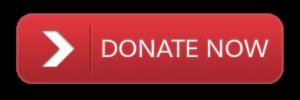Donate-Button_1